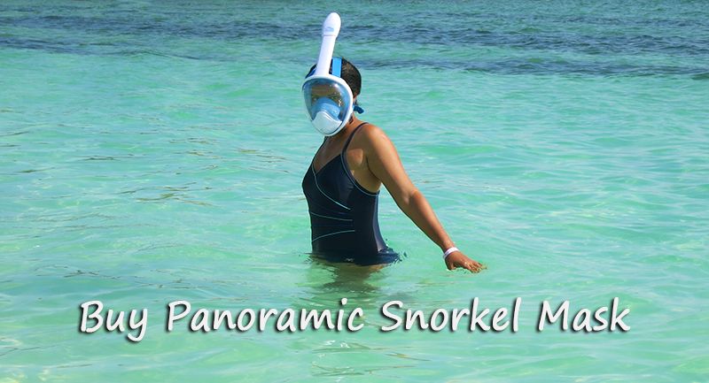 Buy Panoramic Snorkel Mask